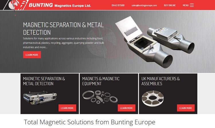 Bunting_Europe_Website.jpg