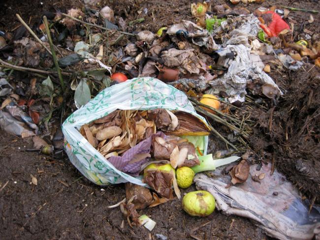 Landia_Food_Waste.jpg